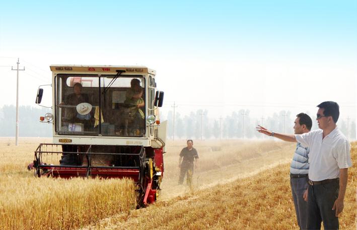 农业综合开发公司麦收喜获佳绩
